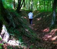 boyau, tranchée, forêt de Verdun, christophe Courau, balade historique, www.balades-historiques.com