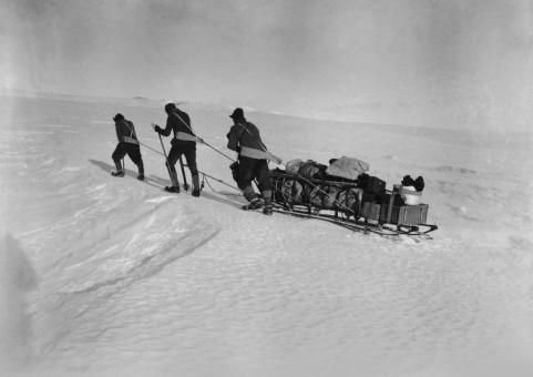 expedition polaire, 1911, 1912, musee des confluences, lyon, a la conquete du pole sud, balade historique, www.balades-historiques.com