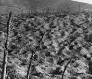 Verdun, mémorial, Vaux, 1916, bataille de verdun, balade historique, www.balades-historiques.com
